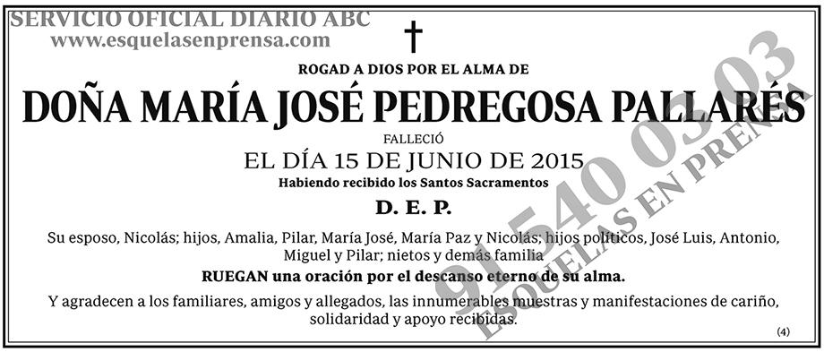 María José Pedregosa Pallarés